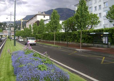 Fleurissement urbain