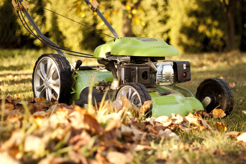 Préparer sa pelouse en Septembre