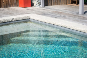 Gonthier-piscine naturelle biologique savoie